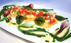 Lobster Ravioli - Little Veggies Onion - Petite Hearts on Fire
